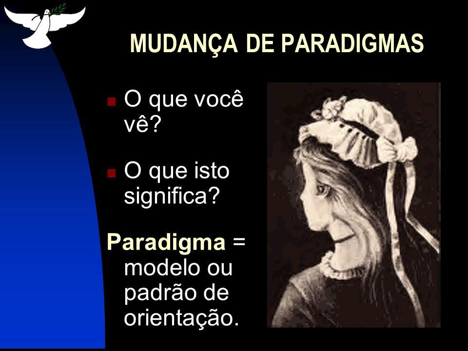 IMPLICAÇÕES DA MUDANÇA DE PARADIGMAS Efeito do paradigma: nossa habilidade de ver nos afeta radicalmente.