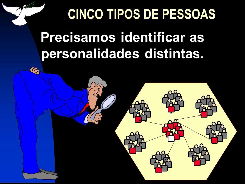 1.OS INOVADORES 2,5% CINCO TIPOS DE PESSOAS