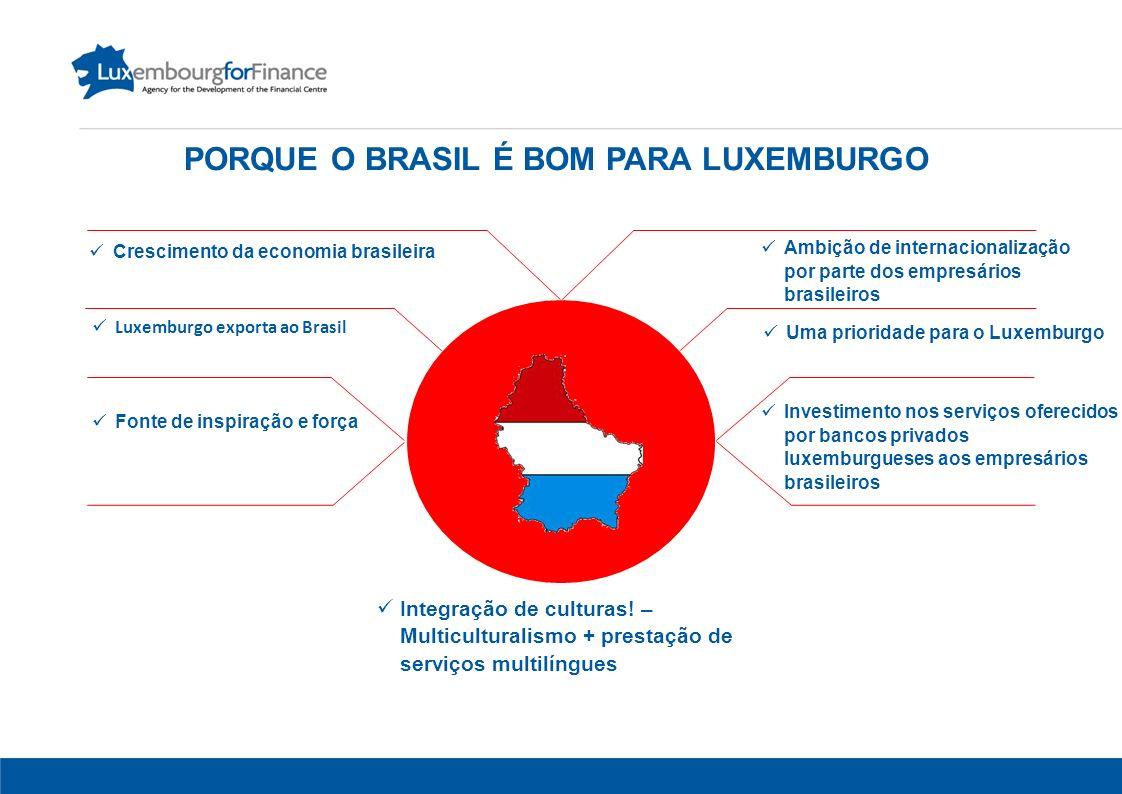 10 Crescimento da economia brasileira Luxemburgo exporta ao Brasil Uma prioridade para o Luxemburgo Fonte de inspiração e força Ambição de internacionalização por parte dos empresários brasileiros Investimento nos serviços oferecidos por bancos privados luxemburgueses aos empresários brasileiros Integração de culturas.
