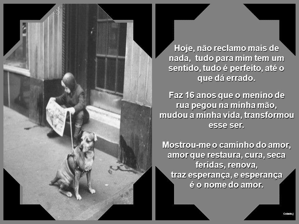 Colacio.j Levei-o até a minha casa, poucos quarteirões dali, e tratei daquele cachorro como se fosse um filho, e o menino, que vivia pelas ruas, foi ficando, e cuidou de mim, curou minhas feridas, antes mesmo de eu curar as feridas do cachorro.