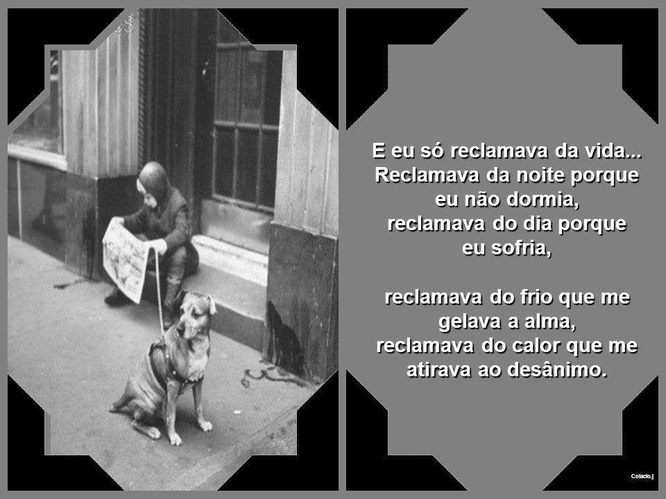 Colacio.j Eu, o menino e o cachorro Texto de Paulo Roberto Gaefke