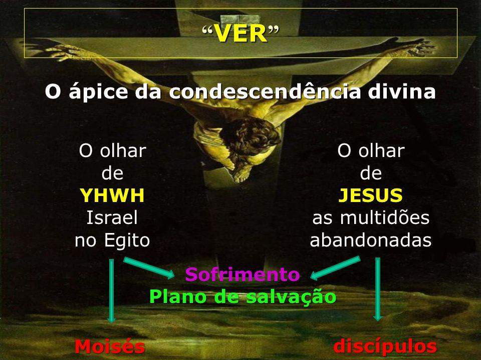 O ápice da condescendência divina VER VER O olhar deJESUS as multidões abandonadas O olhar deYHWH Israel no Egito discípulos Moisés Sofrimento Plano d