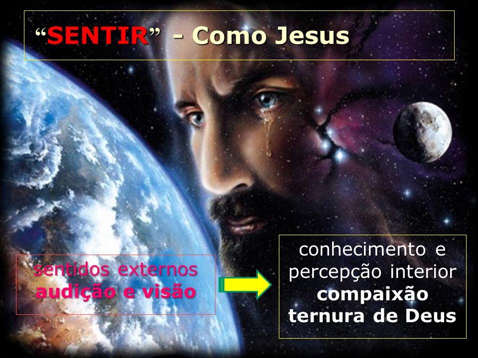 sentidos externos audição e visão conhecimento e percepção interior compaixão ternura de Deus