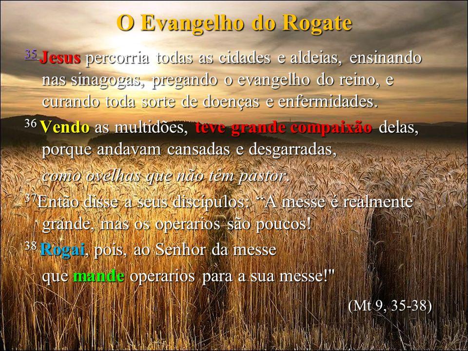 Nossa oração para os bons operários será realmente cumprida quando, como nós, nossos educandos / usuários vão ser discípulos-missionários do Rogate na grande messe no mundo.