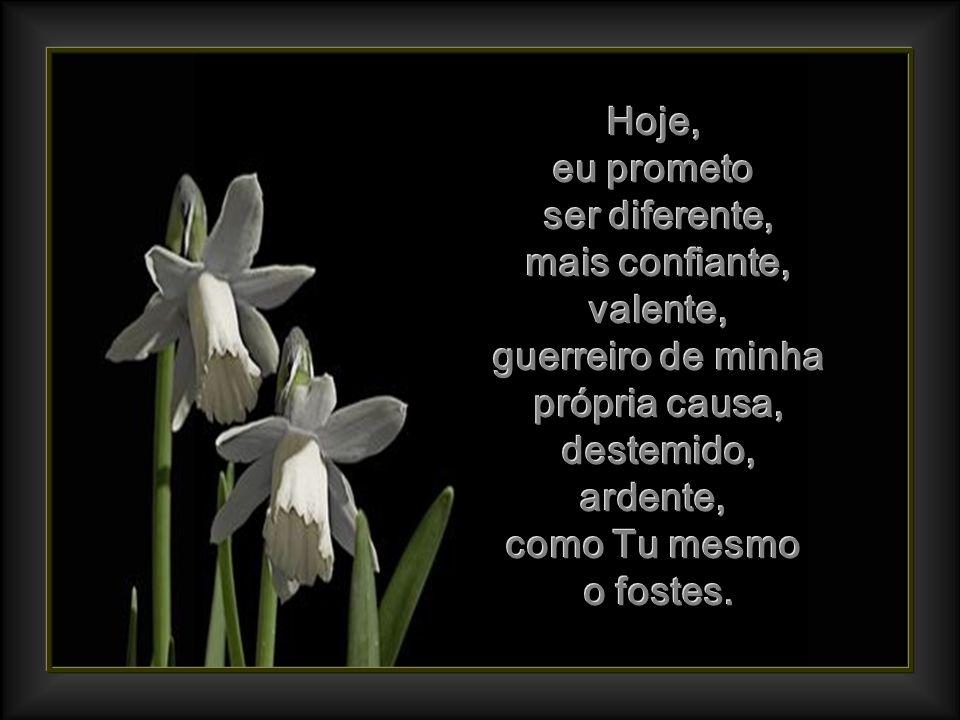 Não mais as lágrimas, não mais a dor, não mais as queixas, não mais as manhãs cinzentas, porque eu tenho a Ti! Não mais as lágrimas, não mais a dor, n