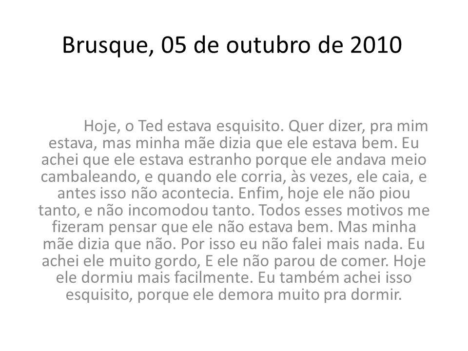 Brusque, 05 de outubro de 2010 Hoje, o Ted estava esquisito. Quer dizer, pra mim estava, mas minha mãe dizia que ele estava bem. Eu achei que ele esta
