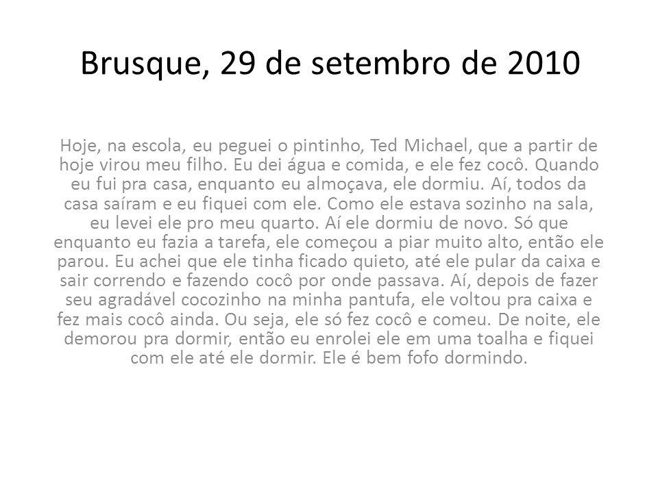 Brusque, 04 de outubro de 2010