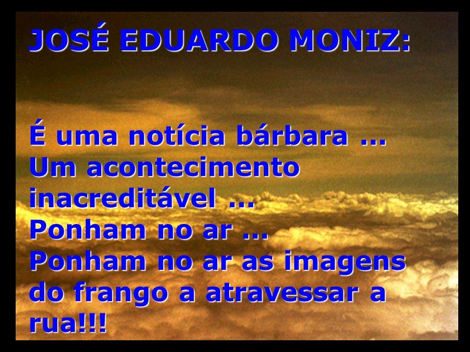 JOSÉ EDUARDO MONIZ: É uma notícia bárbara... Um acontecimento inacreditável... Ponham no ar... Ponham no ar as imagens do frango a atravessar a rua!!!