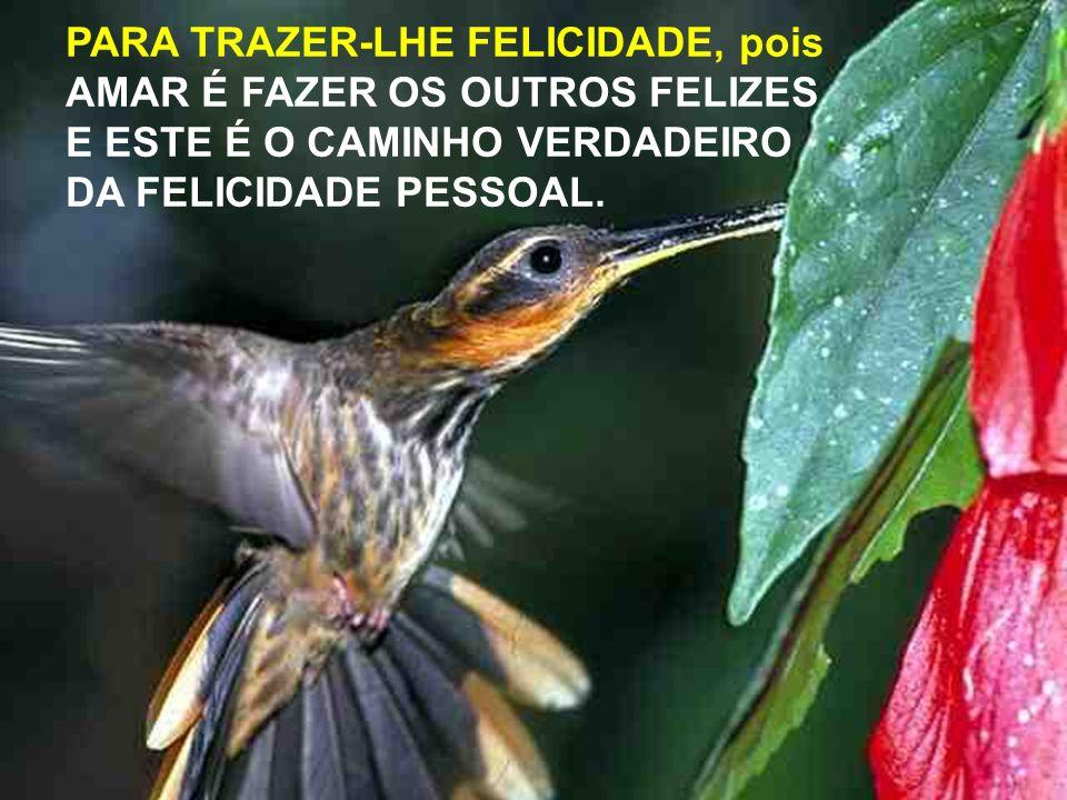 Na verdade amigo(a)... Eu queria ser mesmo um pequeno Beija Flor... Para entrar pela tua janela e te dar um beijo, um abraço, ser consolo, apoio...