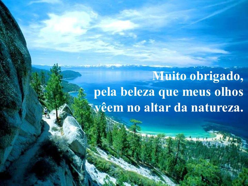 Muito obrigado, pela beleza que meus olhos vêem no altar da natureza.