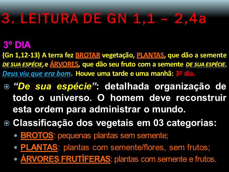 3. LEITURA DE GN 1,1 – 2,4a 3º DIA (Gn 1,12-13) A terra fez BROTAR vegetação, PLANTAS, que dão a semente DE SUA ESPÉCIE, e ÁRVORES, que dão seu fruto