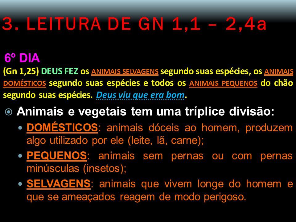 3. LEITURA DE GN 1,1 – 2,4a 6º DIA (Gn 1,25) DEUS FEZ os ANIMAIS SELVAGENS segundo suas espécies, os ANIMAIS DOMÉSTICOS segundo suas espécies e todos