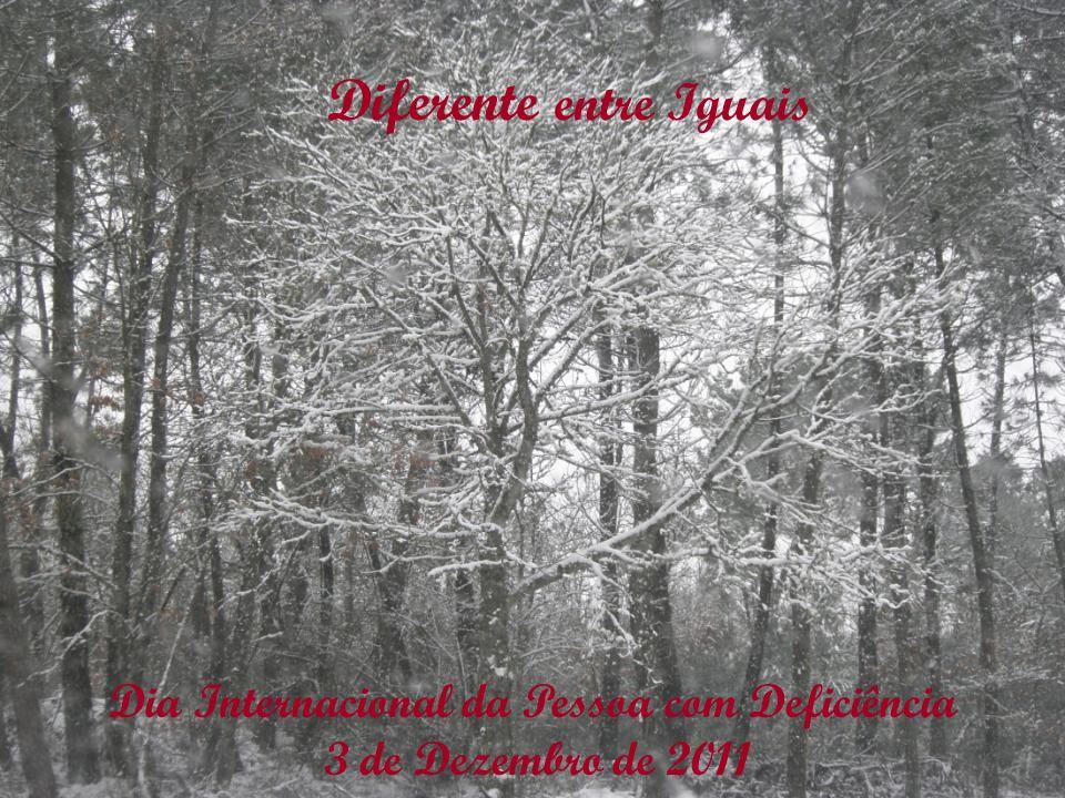 Dia Internacional da Pessoa com Deficiência 3 de Dezembro de 2011 Diferente entre Iguais