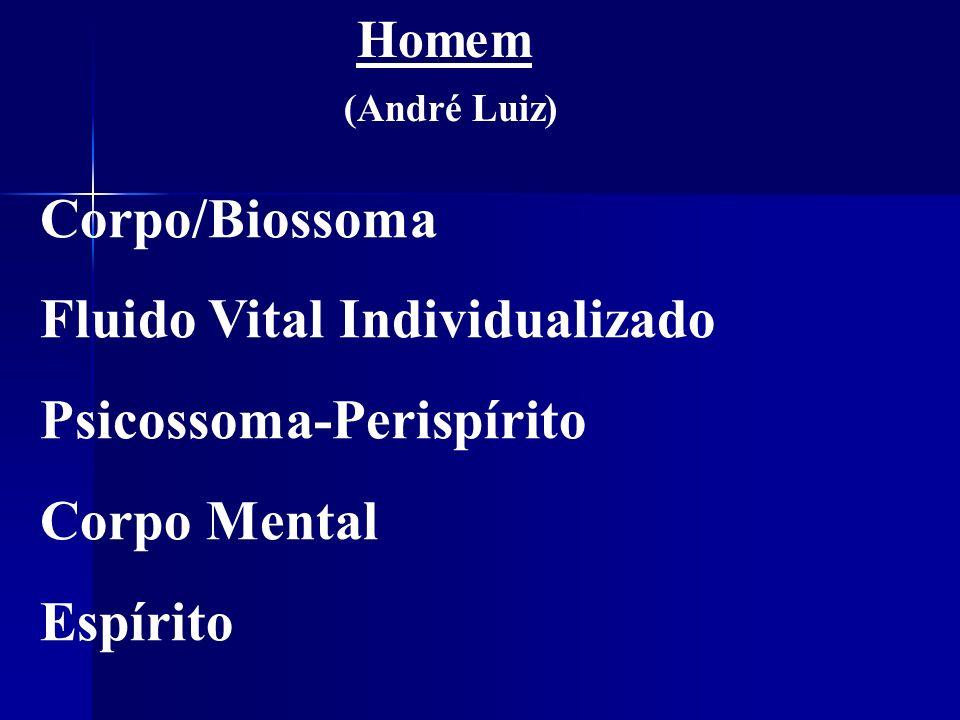 Corpo/Biossoma Fluido Vital Individualizado Psicossoma-Perispírito Corpo Mental Espírito Homem (André Luiz)