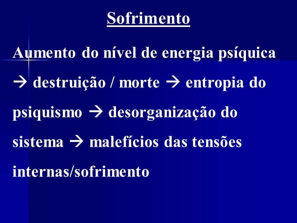 Sofrimento Aumento do nível de energia psíquica destruição / morte entropia do psiquismo desorganização do sistema malefícios das tensões internas/sofrimento