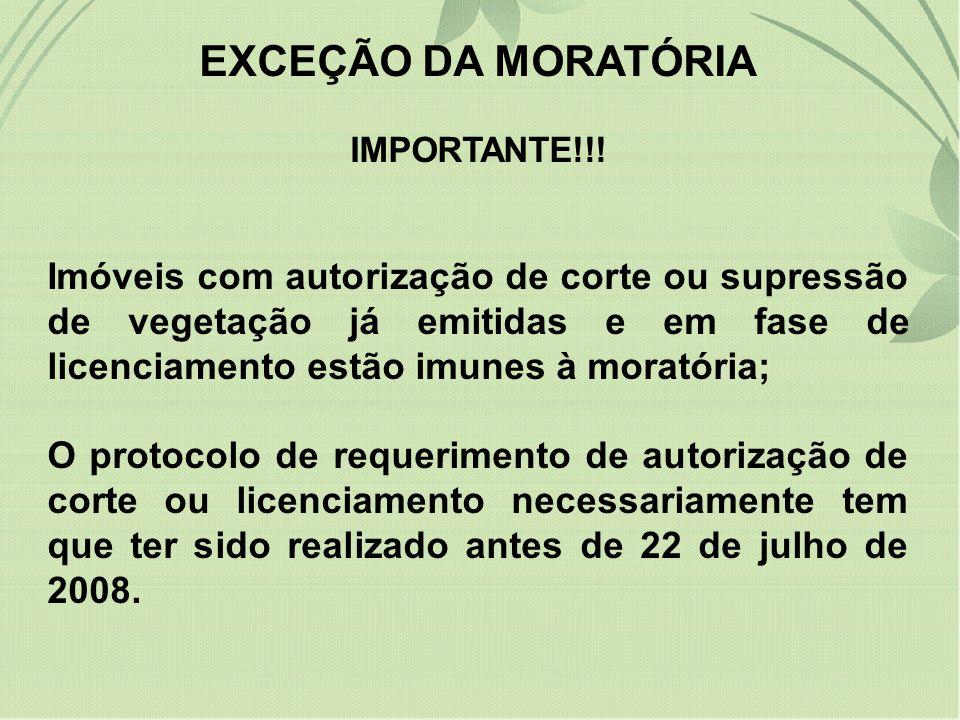 EXCEÇÃO DA MORATÓRIA IMPORTANTE!!.