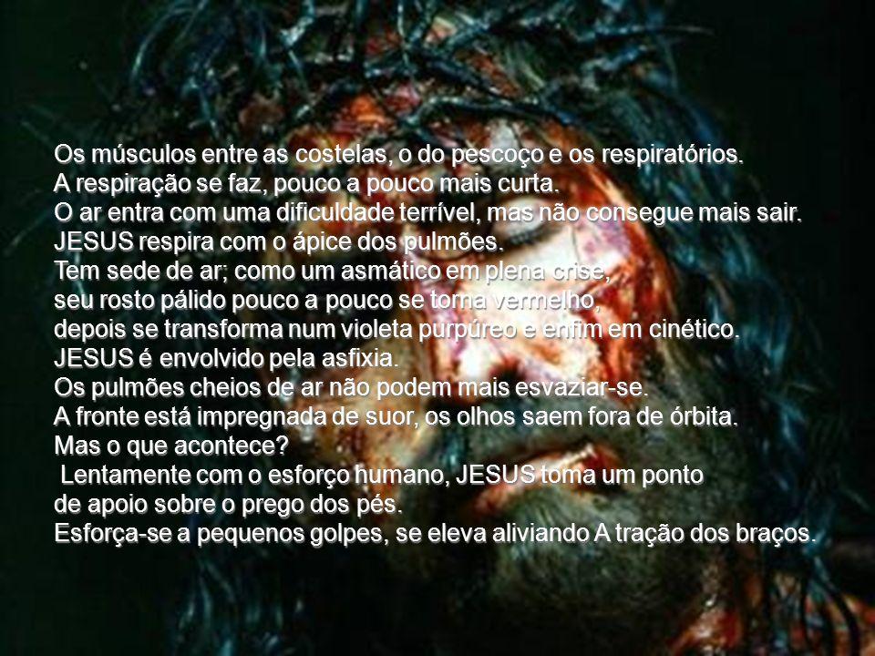 Pregam-lhe os pés. Ao meio dia JESUS tem sede. Não bebeu desde a tarde anterior. Seu corpo é uma máscara de sangue. A boca está semi-aberta; o lábio i