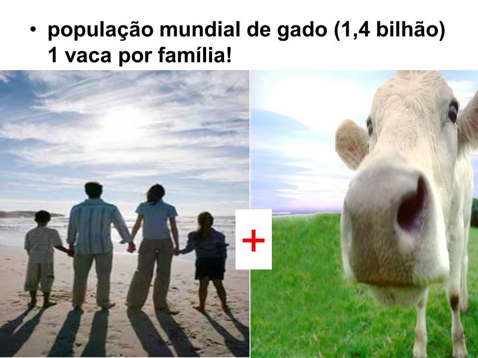 população mundial de gado (1,4 bilhão) 1 vaca por família! +
