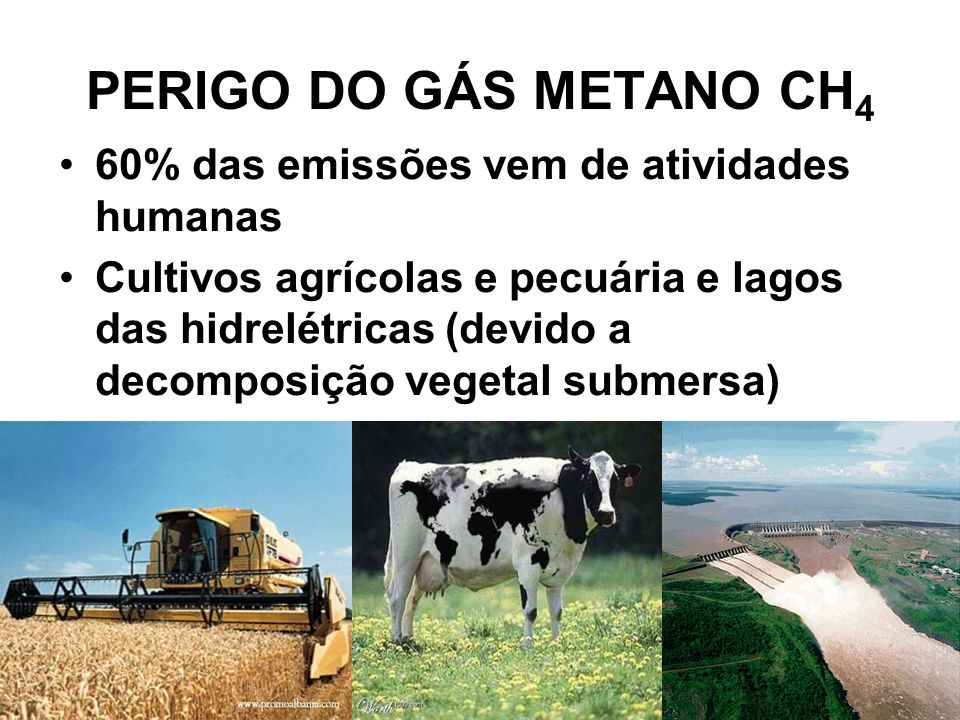 PERIGO DO GÁS METANO CH 4 60% das emissões vem de atividades humanas Cultivos agrícolas e pecuária e lagos das hidrelétricas (devido a decomposição vegetal submersa)