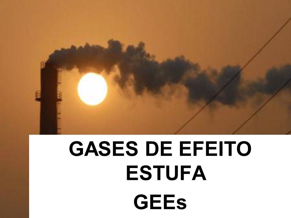 FONTES DE EMISSÃO DE CO 2 (gás carbônico)