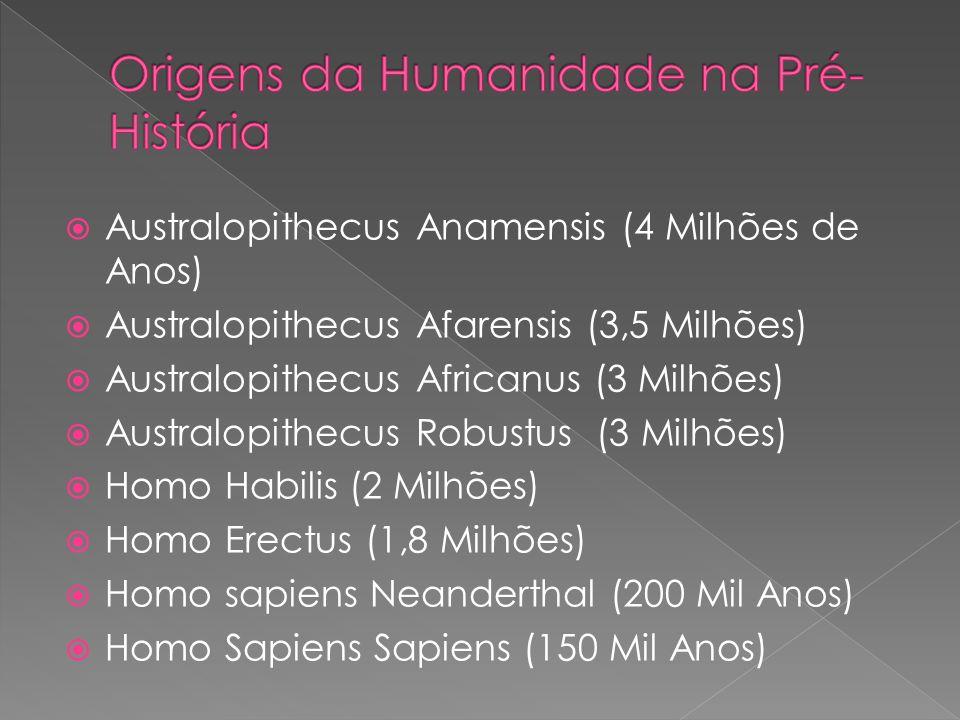 Australopithecus Anamensis (4 Milhões de Anos) Australopithecus Afarensis (3,5 Milhões) Australopithecus Africanus (3 Milhões) Australopithecus Robust
