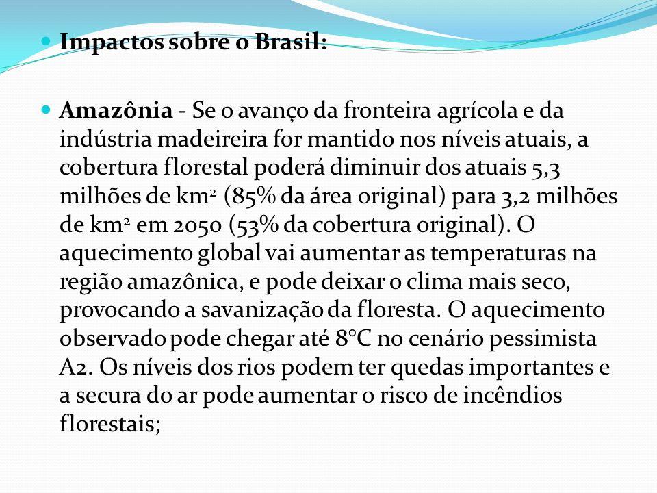 Impactos sobre o Brasil: Amazônia - Se o avanço da fronteira agrícola e da indústria madeireira for mantido nos níveis atuais, a cobertura florestal p