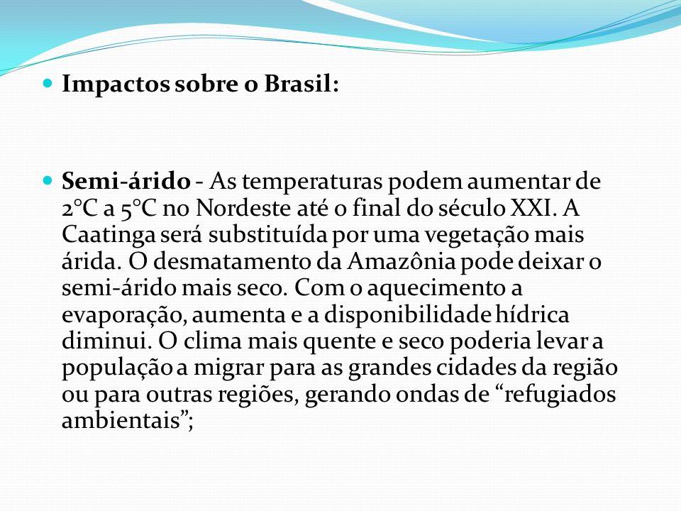 Impactos sobre o Brasil: Semi-árido - As temperaturas podem aumentar de 2°C a 5°C no Nordeste até o final do século XXI. A Caatinga será substituída p