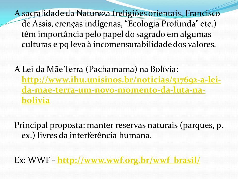 A sacralidade da Natureza (religiões orientais, Francisco de Assis, crenças indígenas, Ecologia Profunda etc.) têm importância pelo papel do sagrado e