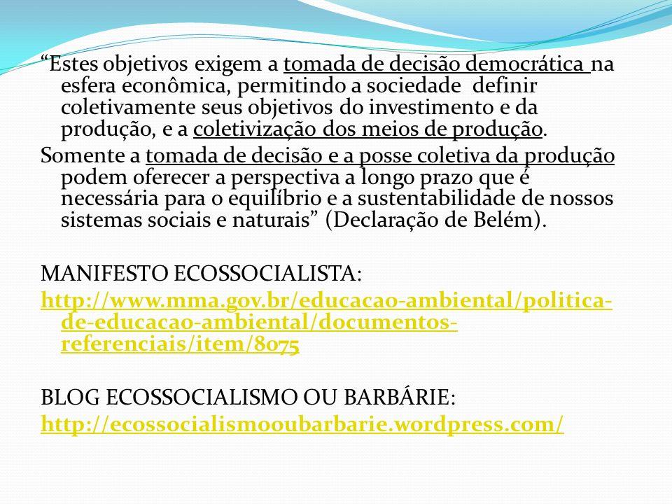 Estes objetivos exigem a tomada de decisão democrática na esfera econômica, permitindo a sociedade definir coletivamente seus objetivos do investiment