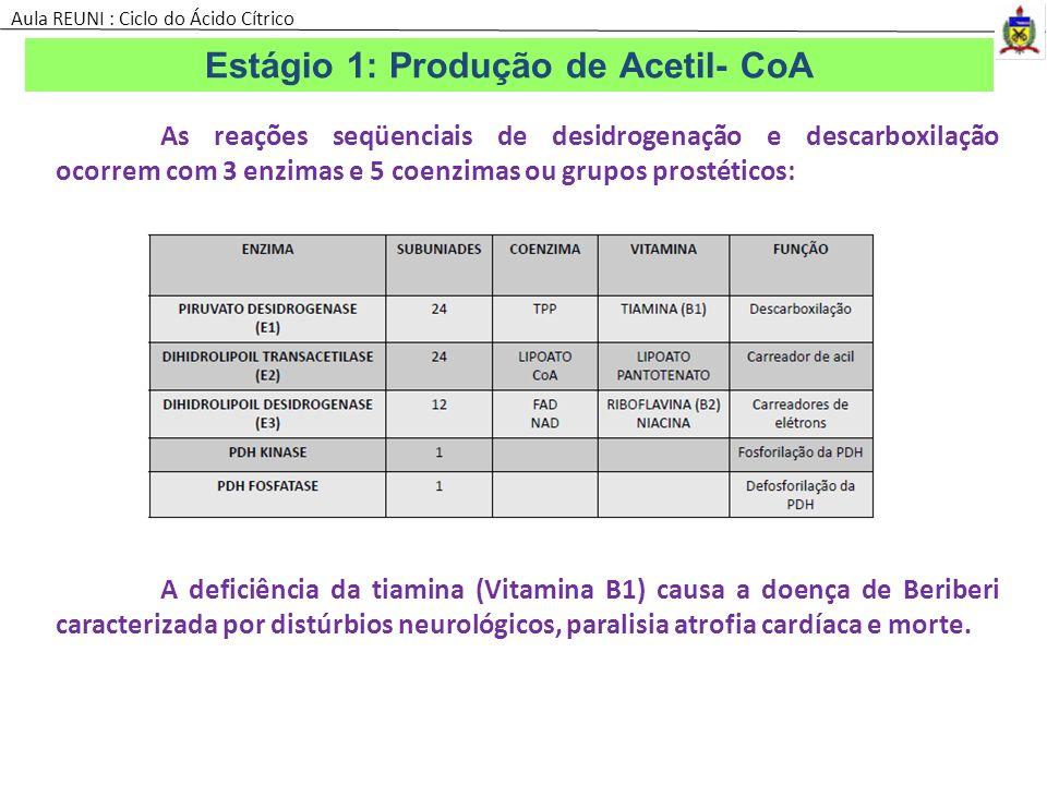 As reações seqüenciais de desidrogenação e descarboxilação ocorrem com 3 enzimas e 5 coenzimas ou grupos prostéticos: A deficiência da tiamina (Vitami