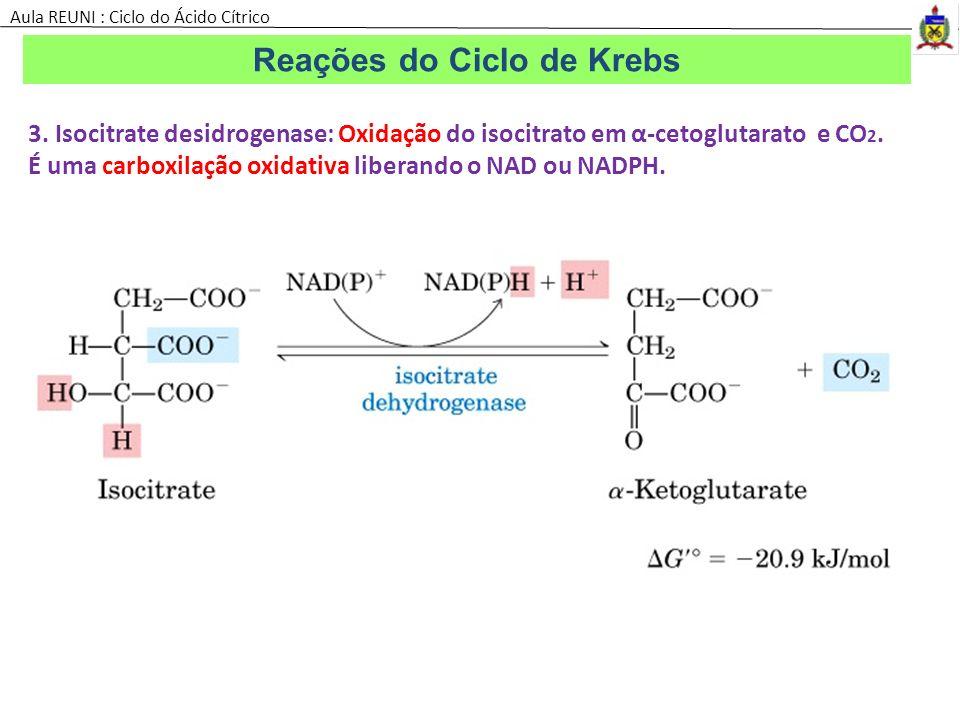 3. Isocitrate desidrogenase: Oxidação do isocitrato em α-cetoglutarato e CO 2. É uma carboxilação oxidativa liberando o NAD ou NADPH. Reações do Ciclo
