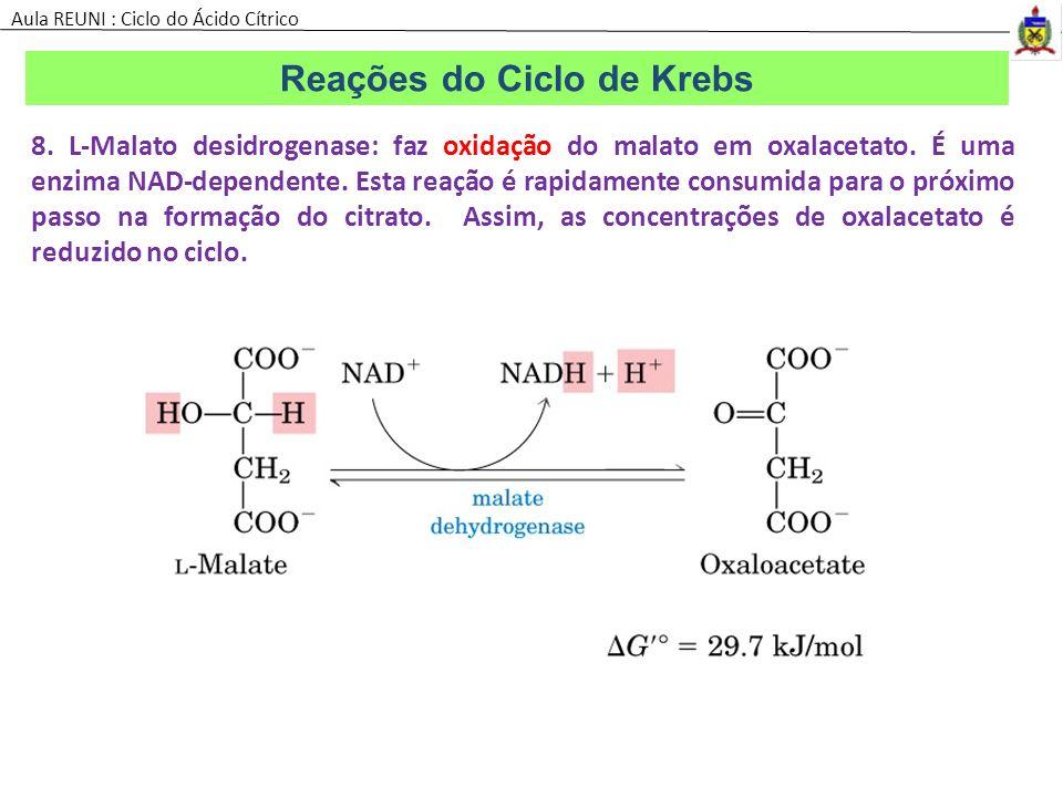 8. L-Malato desidrogenase: faz oxidação do malato em oxalacetato. É uma enzima NAD-dependente. Esta reação é rapidamente consumida para o próximo pass