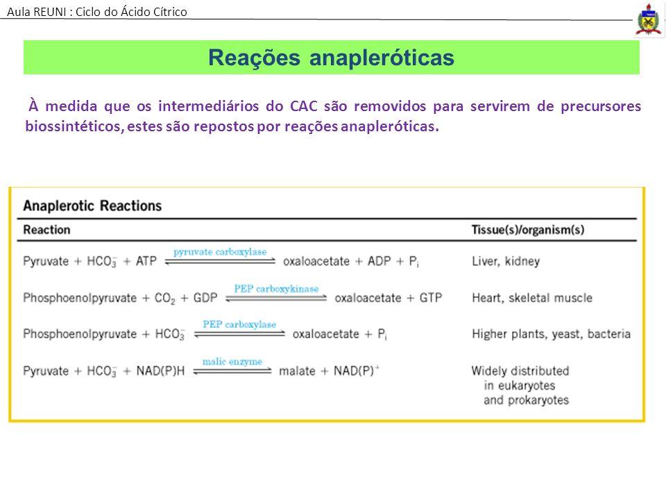 Reações anapleróticas À medida que os intermediários do CAC são removidos para servirem de precursores biossintéticos, estes são repostos por reações