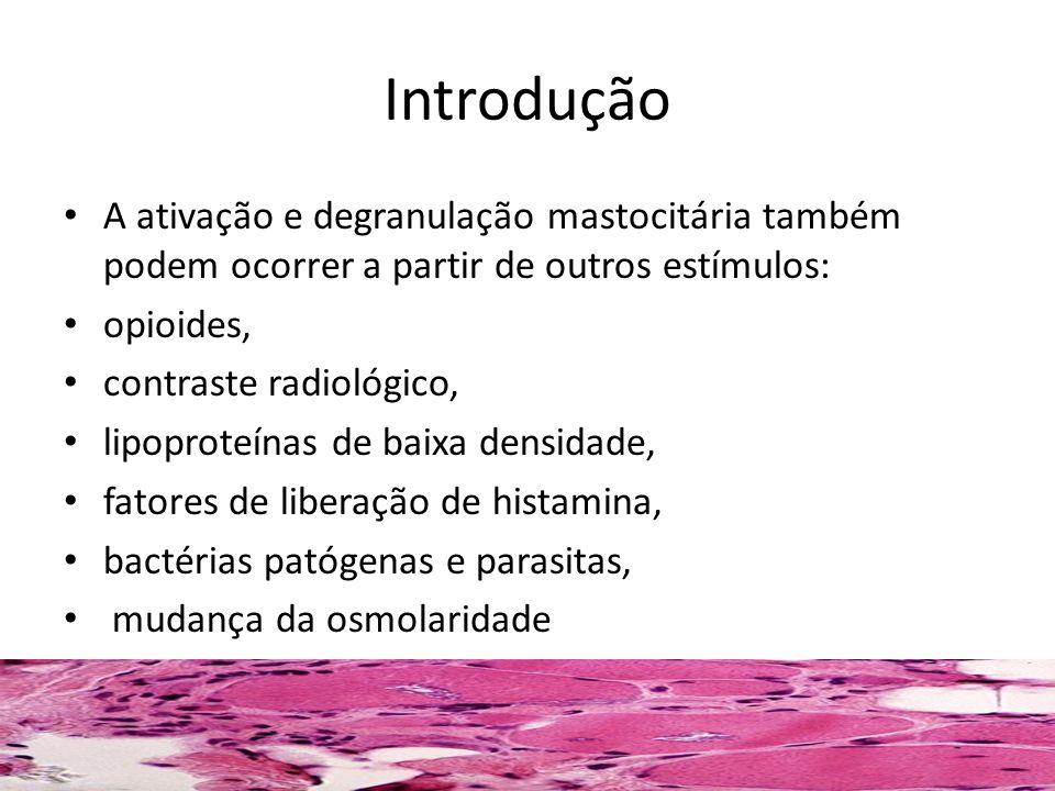 Mastocitose Difusa ou eritrodérmica Forma mais rara de mastocitose.