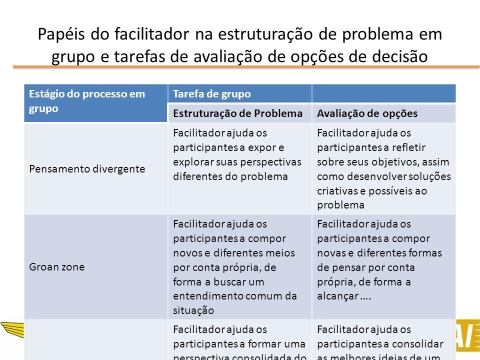 Facilitated Modelling Processo – Fases realizadas em grupos de trabalho Estruturar a situação e definir o foco Desenvolver o modelo dos objetivos ou sistemas organizacionais Criar, refinar e avaliar opções de ações a tomar Desenvolver os planos de ação
