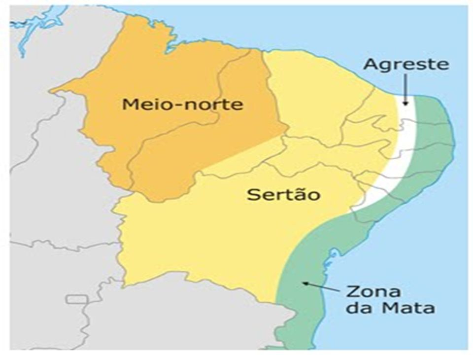 As zonas naturais do Nordeste