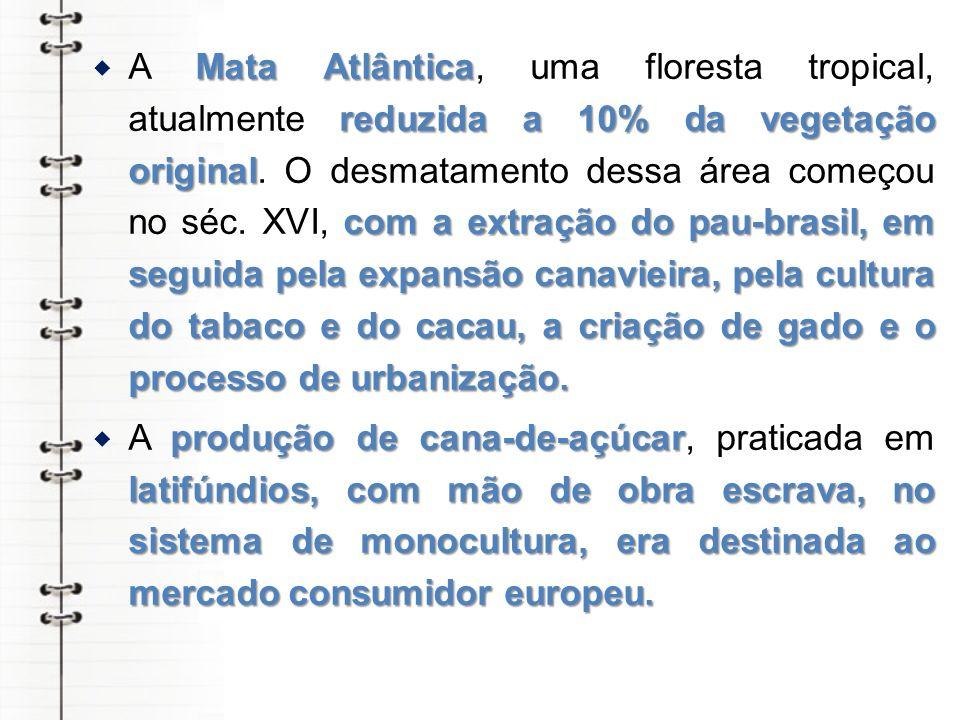 Mata Atlântica reduzida a 10% da vegetação original com a extração do pau-brasil, em seguida pela expansão canavieira, pela cultura do tabaco e do cacau, a criação de gado e o processo de urbanização.
