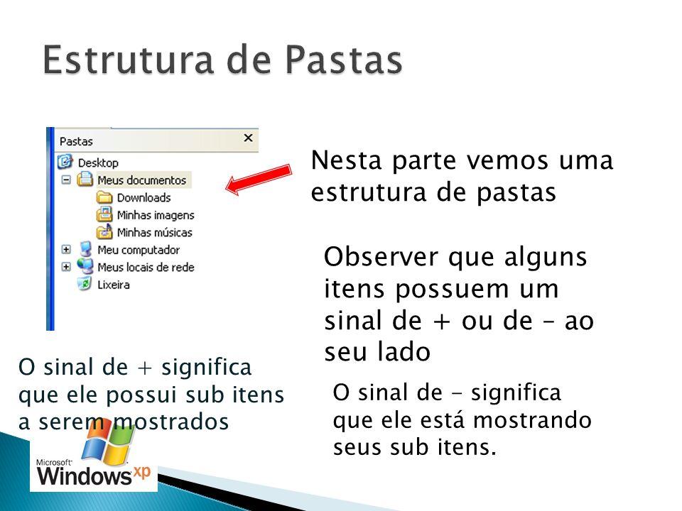Nesta parte vemos uma estrutura de pastas Observer que alguns itens possuem um sinal de + ou de – ao seu lado O sinal de + significa que ele possui su