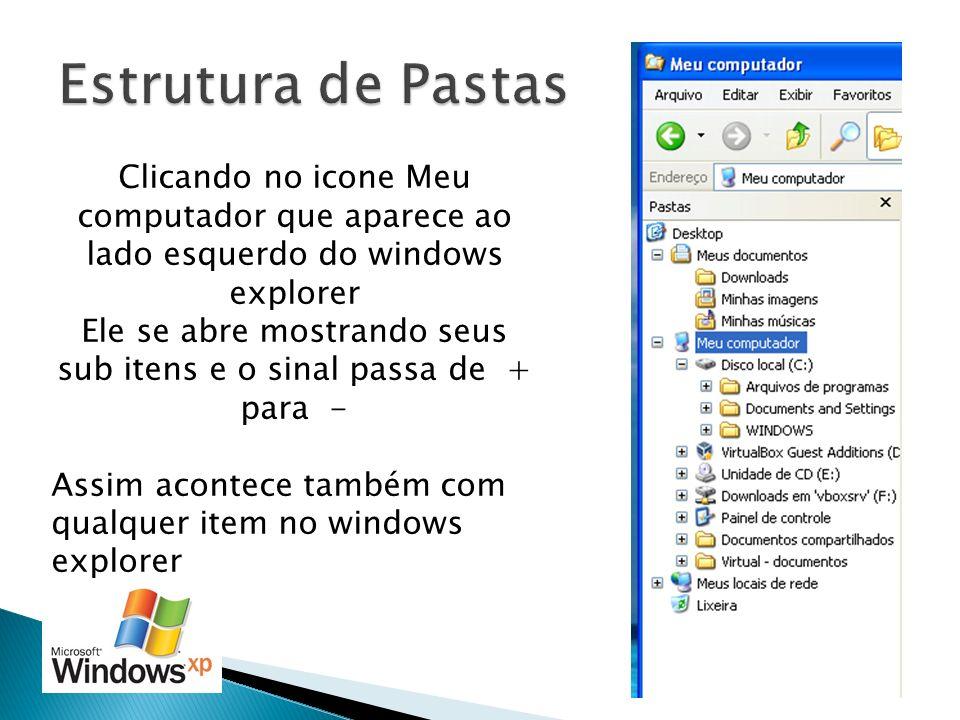Clicando no icone Meu computador que aparece ao lado esquerdo do windows explorer Ele se abre mostrando seus sub itens e o sinal passa de + para - Ass