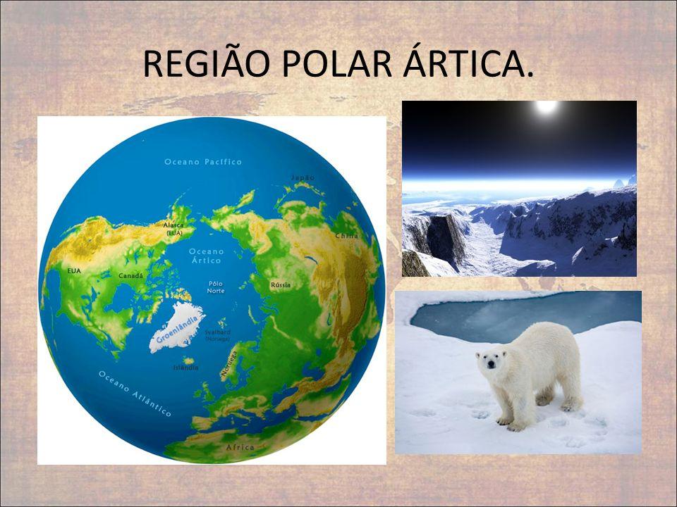 REGIÃO POLAR ÁRTICA.