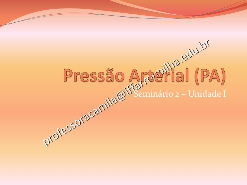 professoracamila@iffarroupilha.edu.br Seminário 2 – Unidade I
