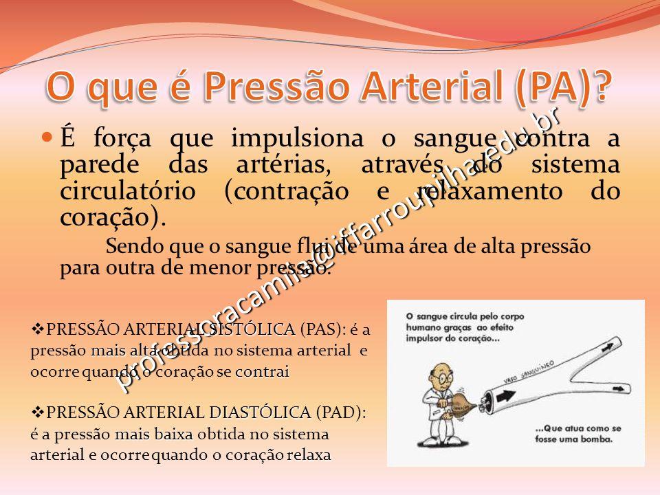 professoracamila@iffarroupilha.edu.br É força que impulsiona o sangue contra a parede das artérias, através do sistema circulatório (contração e relax