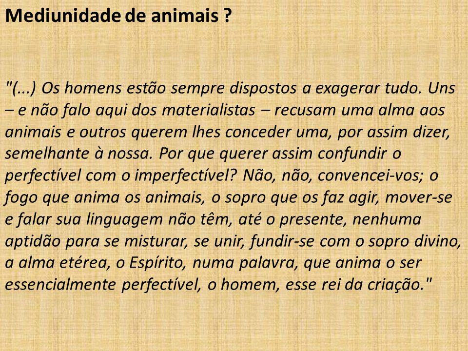 Mediunidade de animais ?