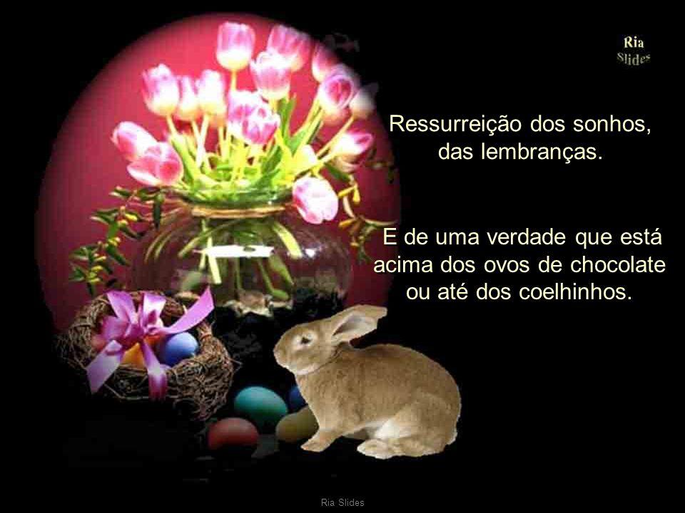 Ria Slides Ressurreição do sorriso, da alegria de viver, do amor. Ressurreição do sorriso, da alegria de viver, do amor. Ressurreição da amizade e da