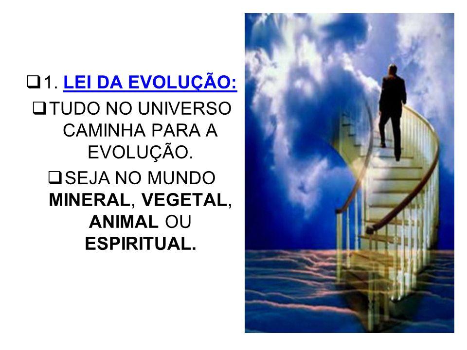 1.LEI DA EVOLUÇÃO: TUDO NO UNIVERSO CAMINHA PARA A EVOLUÇÃO.