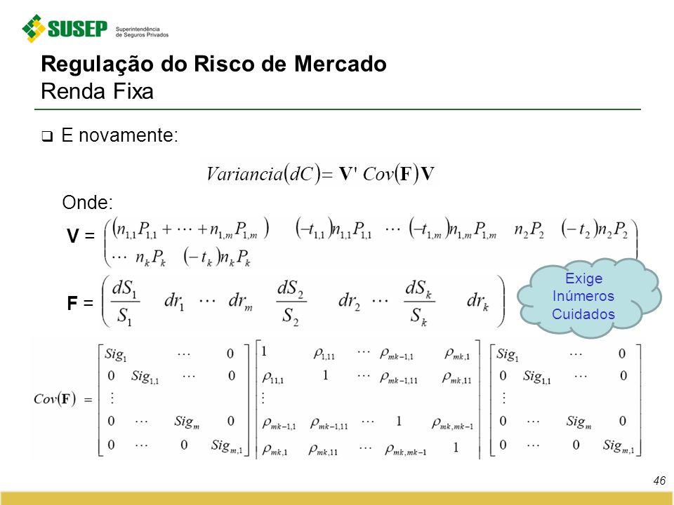 Regulação do Risco de Mercado Renda Fixa E novamente: Onde: V = F = 46 Exige Inúmeros Cuidados