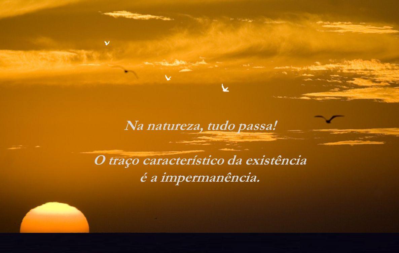 Parece que somos passageiros na eternidade, mas a verdade é que somos eternos dentro do temporário. Ou seja, somos o eterno no movimento da vida que s