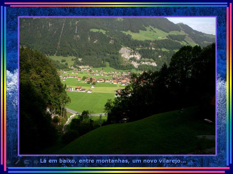 Outras próximas aos pinheiros, formando paisagens de cartões postais...