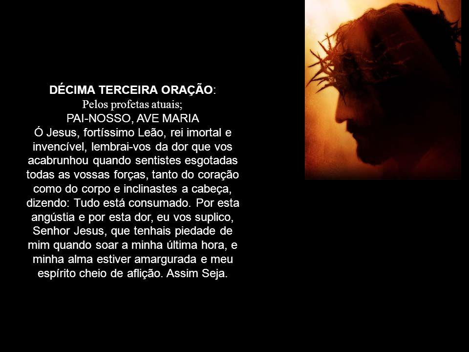 DÉCIMA TERCEIRA ORAÇÃO: Pelos profetas atuais; PAI-NOSSO, AVE MARIA Ó Jesus, fortíssimo Leão, rei imortal e invencível, lembrai-vos da dor que vos aca