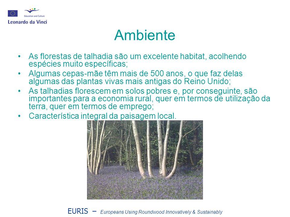 EURIS – Europeans Using Roundwood Innovatively & Sustainably Ambiente As florestas de talhadia são um excelente habitat, acolhendo espécies muito espe